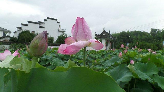 盐铺位于休宁县海阳镇境内,距县城2公里.